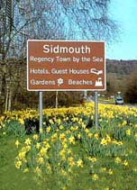Sidmouth town